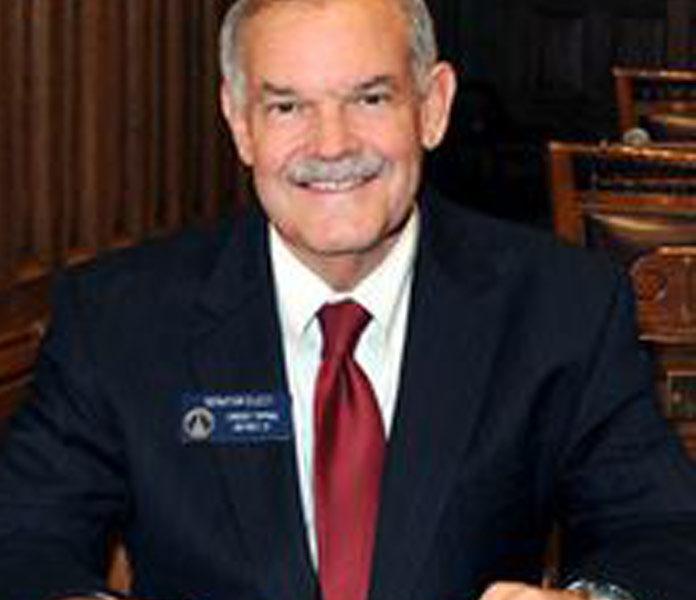 Lindsey Tippins, State Senator, District 37